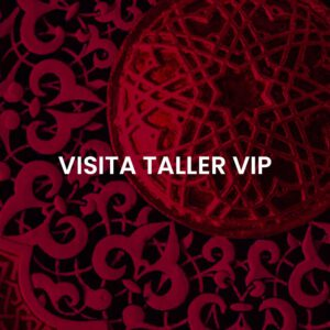 Visita Taller VIP